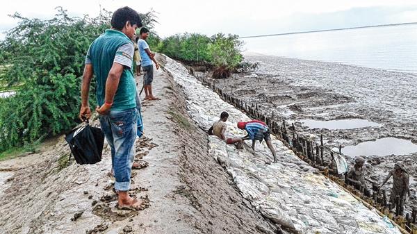 বাঁধ মেরামত হচ্ছে নফরগঞ্জ ২ লঞ্চঘাট এলাকায়। ছবি: সামসুল হুদা।