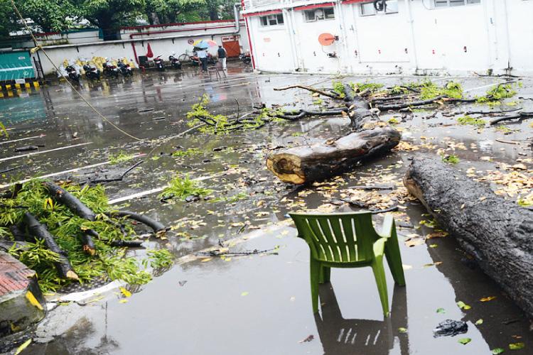 দুর্ঘটনা: ক্লাব চত্বরের এখানেই ভেঙে পড়ে গাছ। শনিবার, সৈয়দ আমির আলি অ্যাভিনিউয়ে। ছবি: স্বাতী চক্রবর্তী