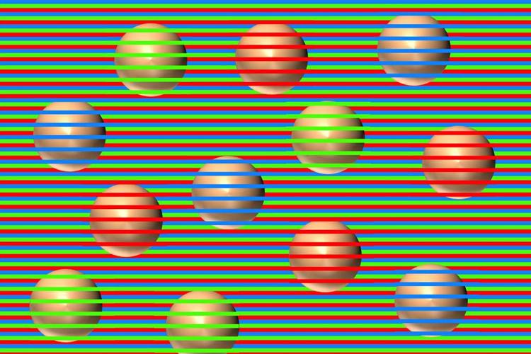 ডেভিড নোভিকের তৈরি অপটিক্যাল ইলিউশন। ছবি : টুইটার থেকে নেওয়া।