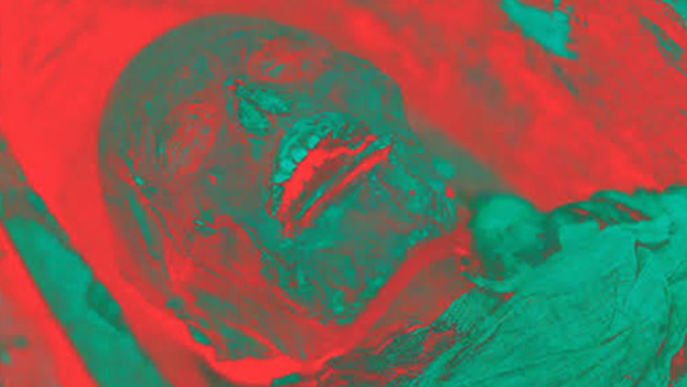 তারপর ৩ডি-প্রিন্টারে ওই মমির ভোকাল ট্র্যাকের কপি করে ল্যারিংসে কৃত্রিম ভাবে তাঁর কণ্ঠস্বর তৈরি করেন। তাতে তাঁকে ক্ষীণ কণ্ঠে 'বেড' বা 'ব্যাড' জাতীয় কিছু শব্দ উচ্চারণ করতে শোনা গিয়েছে।