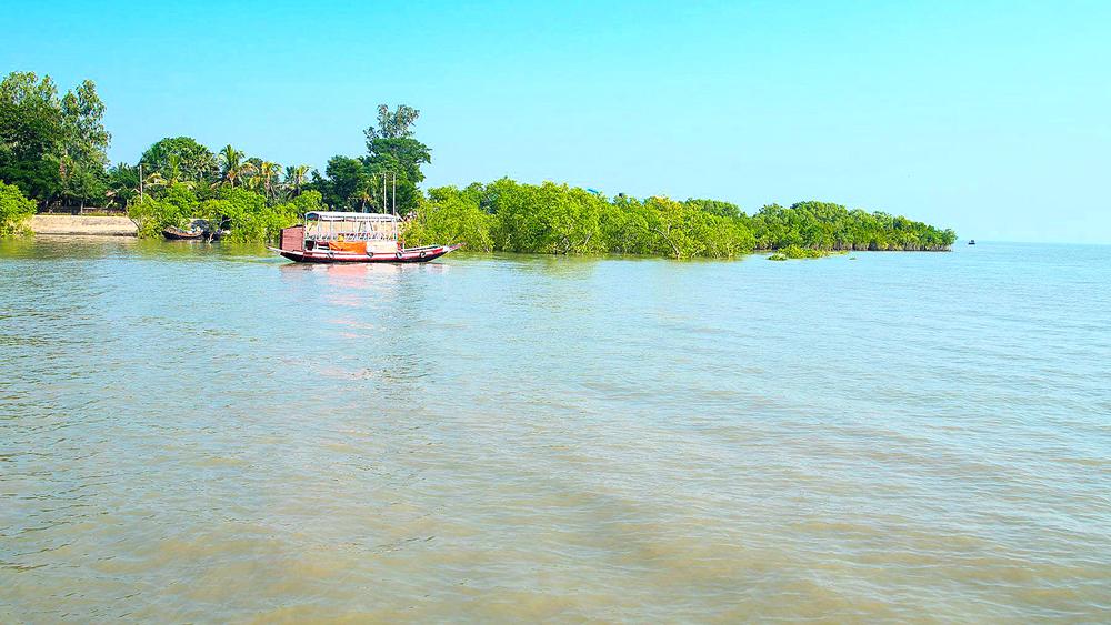 তরঙ্গ: মাতলা নদীর বাহার