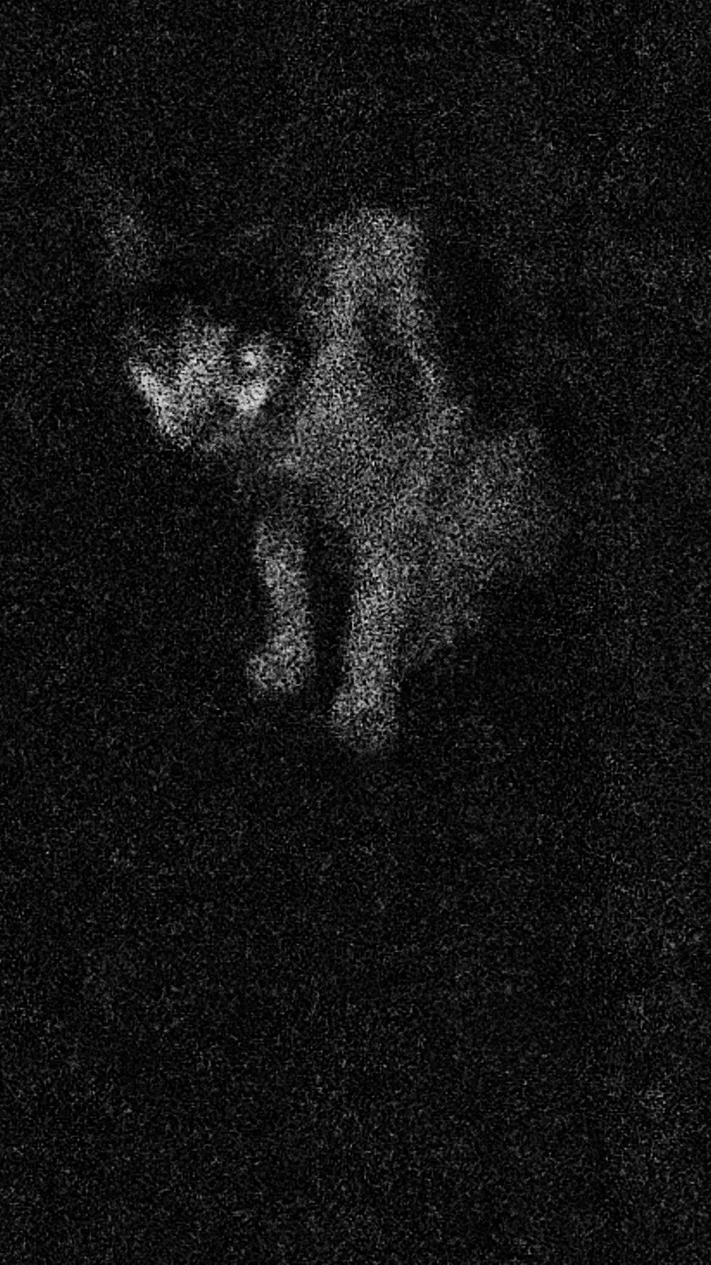 বাবার কিনে দেওয়া ক্যামেরায় ছোটবেলা থেকে ছবি তুললেও ২০১৬ থেকে ছবি তোলার কাজে বেশি করে মন বসিয়েছেন মালদহের এই মেয়ে। কলকাতার নামকরা গ্যালারিতে ছবি দেখতে যাওয়া, গুণী শিল্পীদের কাজ ছাপ ফেলে যেত মনে।