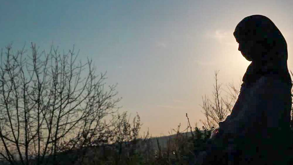 কিন্তু তিনি কি ভাসুরকেও খুন করেছিলেন নিজের হাতে? নিজের আসল পরিচয় বাঁচাবেন বলে? সিক্কার এই প্রশ্নের উত্তরে নীরব ছিলেন সেহমত। তবে স্বীকার করেছিলেন তাঁর জন্যই প্রাণ হারিয়েছিলেন তাঁর স্বামী ও ভাসুর, দু'জনেই। (ছবি: সোশ্যাল মিডিয়া)