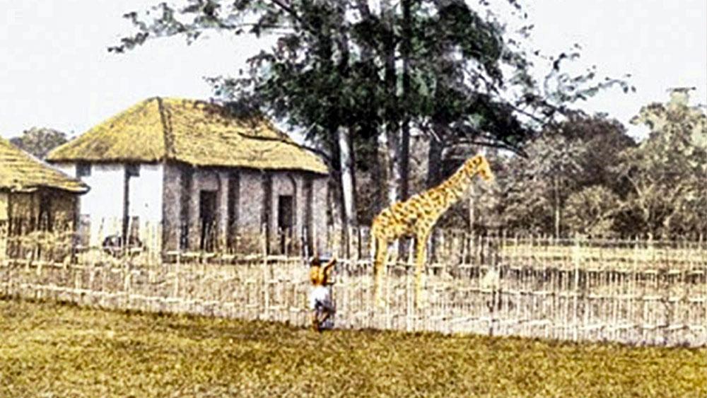 ১৭৭২ খ্রিস্টাব্দে ইস্ট ইন্ডিয়া কোম্পানির ব্যারাক তৈরি হয়েছিল এখানে। সেখান থেকেই তা ব্যারাক-এর শহর বা ব্যারাকপুর। তার আগে এই জনপদের নাম ছিল চানক। তবে এর সঙ্গে জোব চার্নকের কোনও সম্পর্ক নেই। চাণক্য বা সংস্কৃত ভাষার আরও একটি শব্দ 'চানক' থেকেই এর নামকরণ হয়েছিল। চানক কথার অর্থ ছোলা। এই 'চানক' থেকেই 'চানাচুর' শব্দের জন্ম।