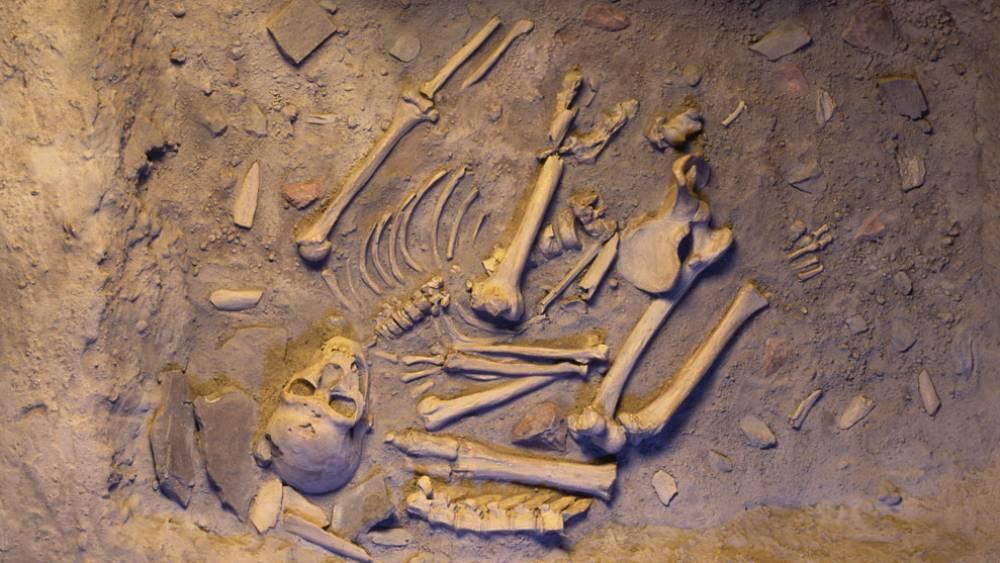 নিয়ানডার্থালদের এই কঙ্কালগুলি থেকেই মিলেছিল আধুনিক মানুষের পূর্বপুরুষের ডিএনএ। ছবি সৌজন্যে: গবেষকদল।