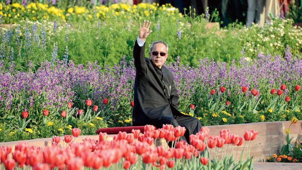 স্মৃতি: রাষ্ট্রপতি ভবনের মোগল গার্ডেনে প্রণব মুখোপাধ্যায়। ১৩ ফেব্রুয়ারি, ২০১৫। প্রেম সিংহ।