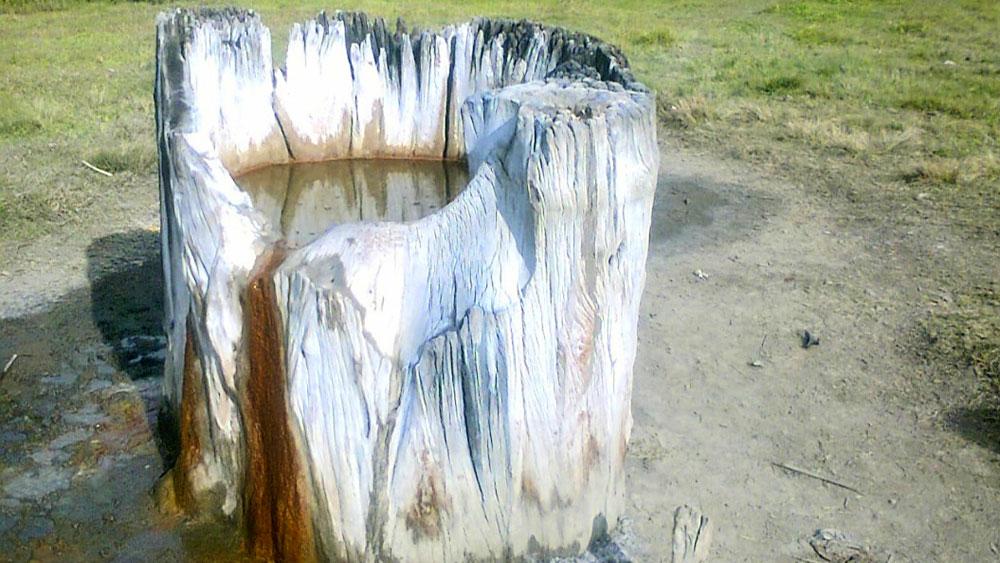 বিস্ময়কর: মণিপুরের নিঙ্গেল গ্রামে নোনা জলের কুয়ো।