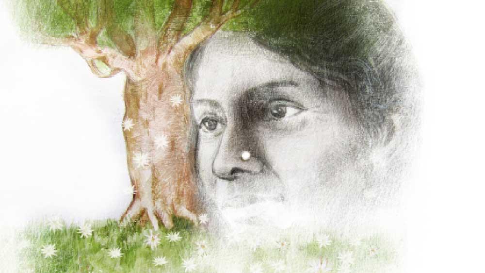 ছবি: তারকনাথ মুখোপাধ্যায়।