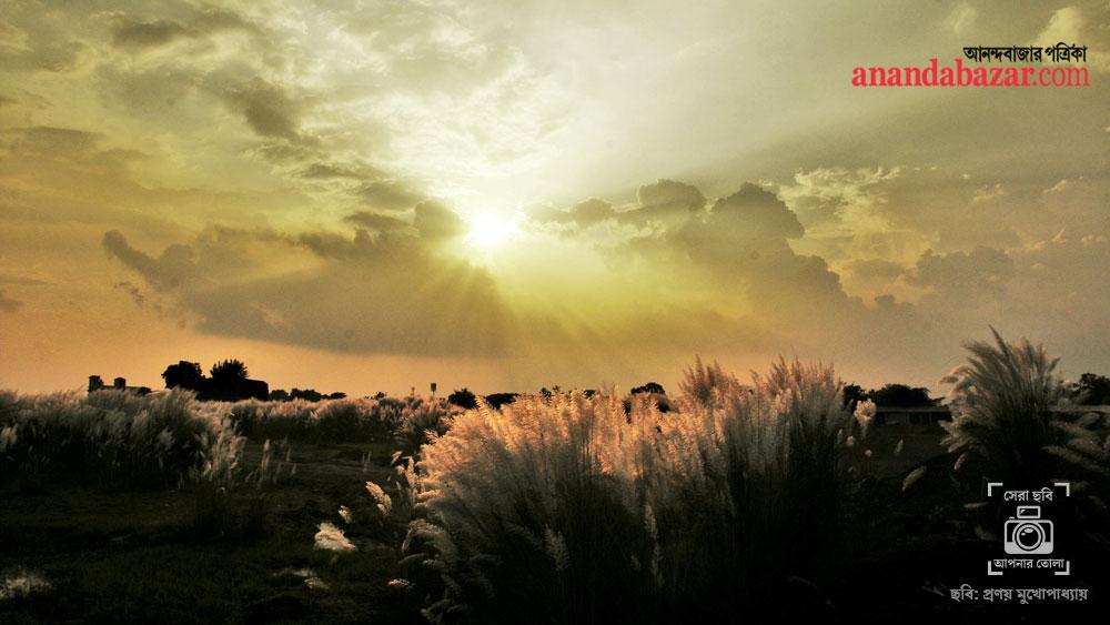 ছবিটি তুলেছেন: প্রণয় মুখোপাধ্যায়