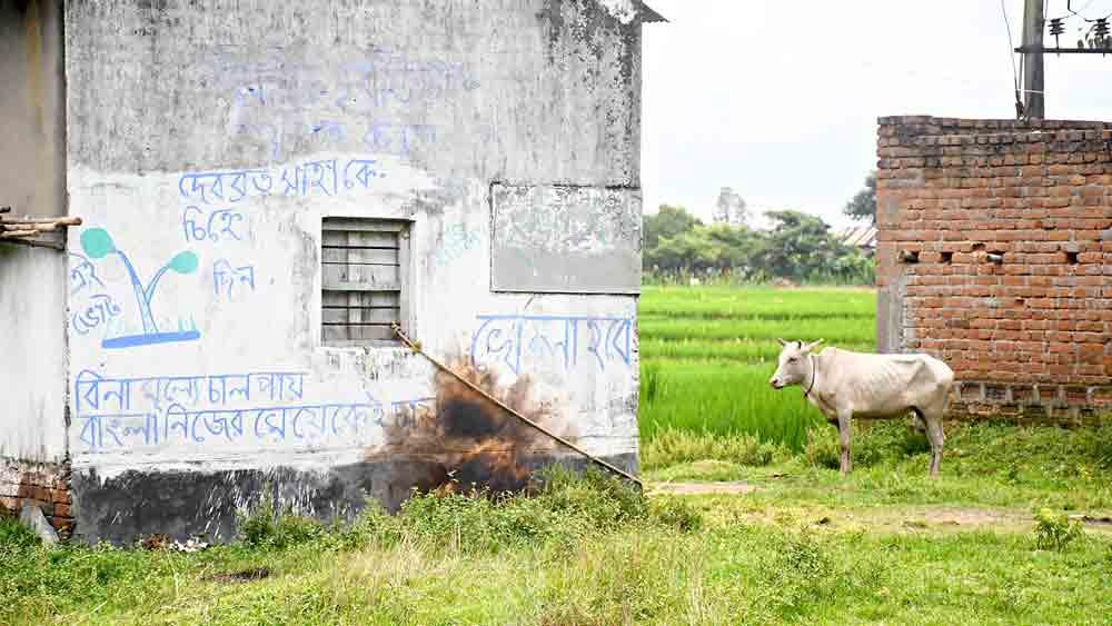 দেওয়ালে বোমাবাজির চিহ্ন। ছবি: দয়াল সেনগুপ্ত