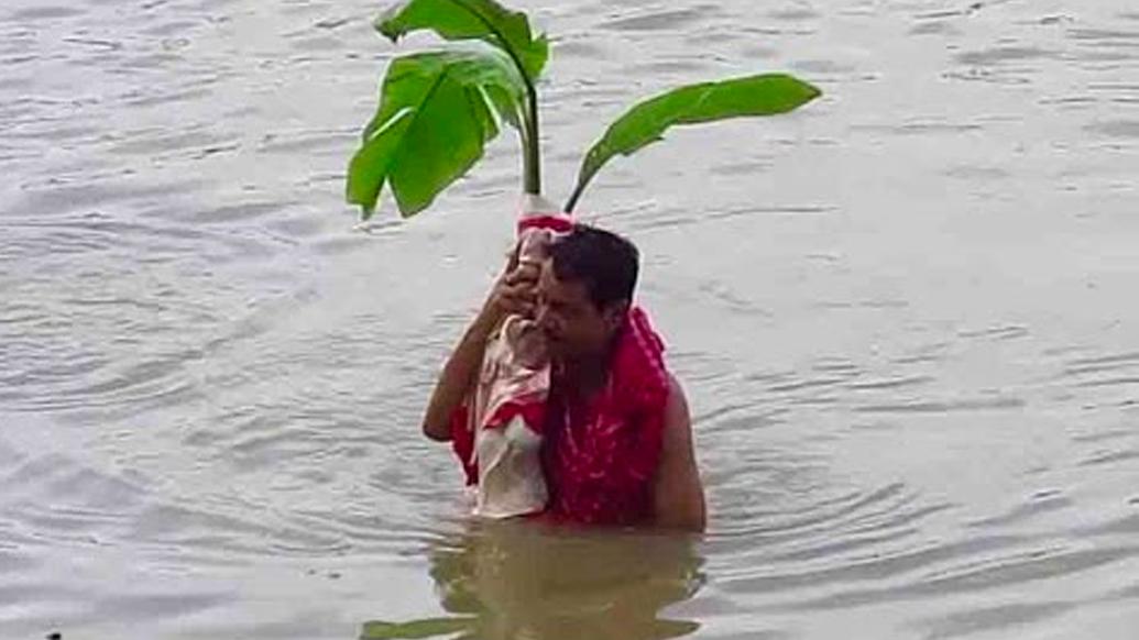 দুর্গাপুজোয় কলা বউ স্নান অন্যতম একটি শাস্ত্রীয় বিধি। কলা বউ অর্থাৎ নবপত্রিকা। নবপত্রিকার জন্ম হয়েছিল কীভাবে জানেন?