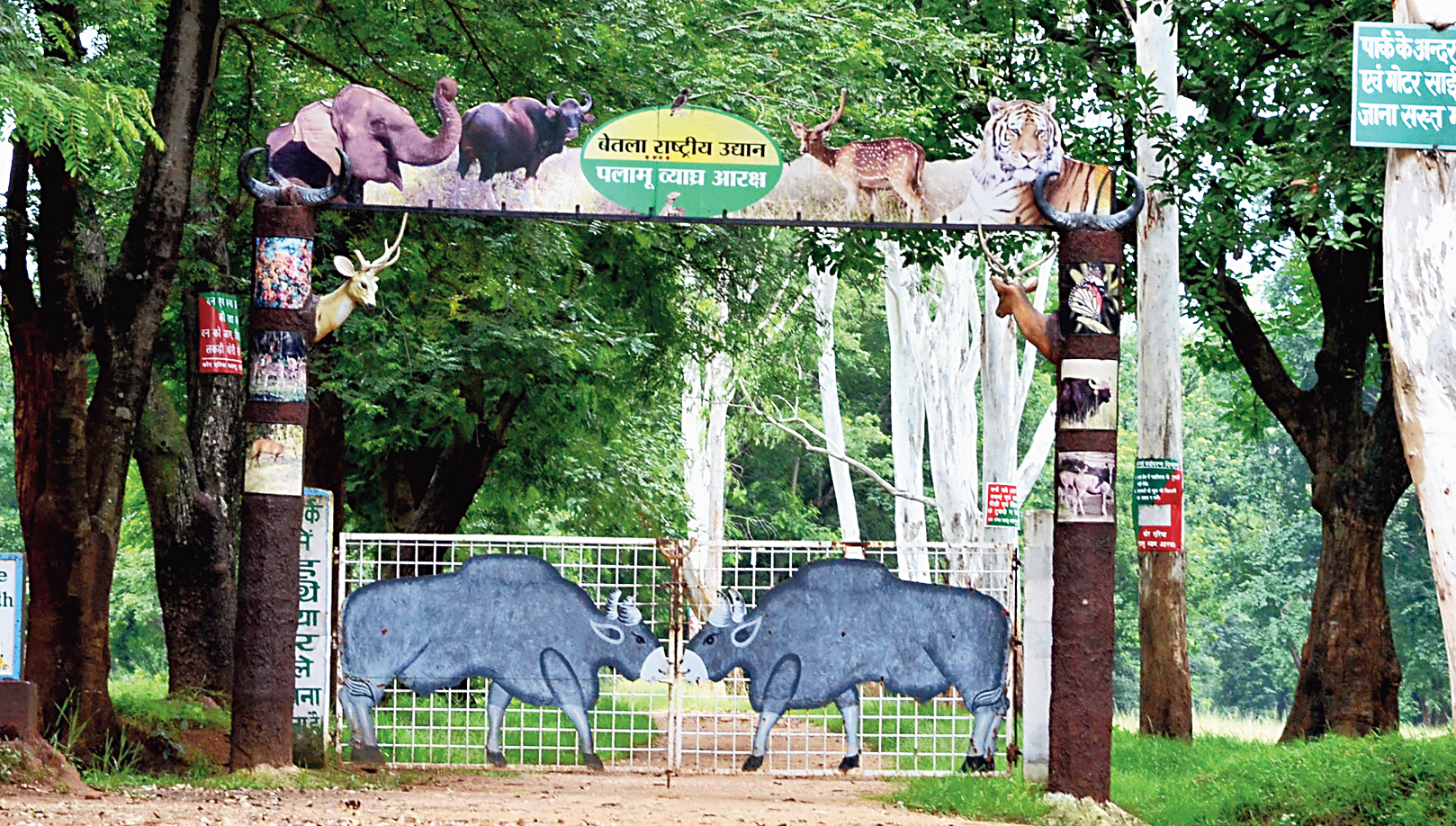 Palamau Tiger Reserve