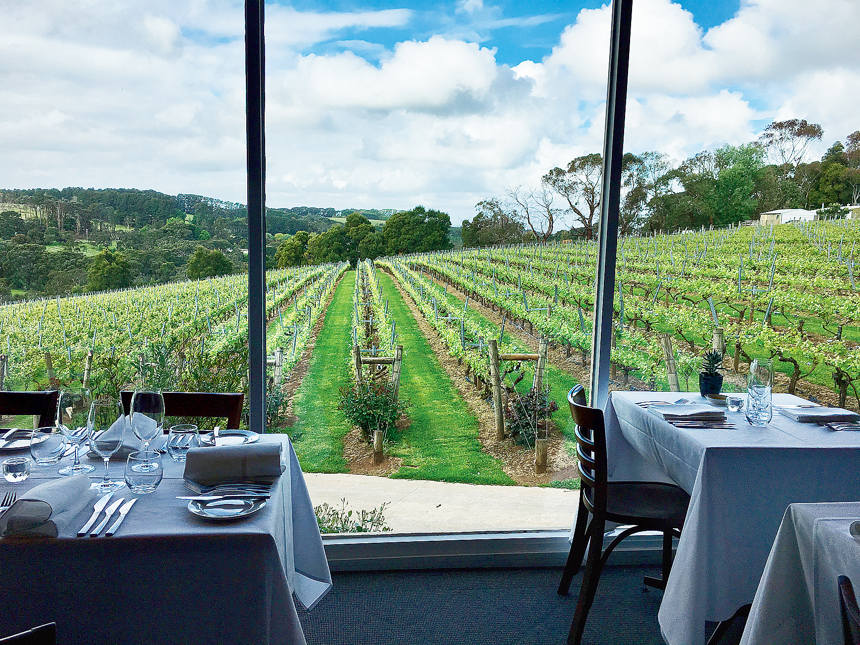 The view from the Paringa Estate restaurant