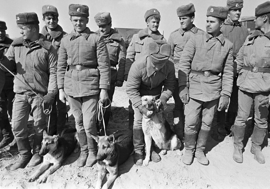 Soviet Army soldiers with their war-dogs line up after their unit crossed a bridge on the border between Afghanistan and then Soviet Uzbekistan near the Uzbek town of Termez, Uzbekistan, on February 15, 1989. When the last Soviet tanks rumbled back home across a bridge on the border with Afghanistan 30 years ago, the withdrawal was hailed as a much-anticipated end to a bloody quagmire.