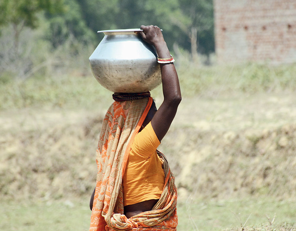 A woman fetches water from a tubewell at Bangurda in Patamda