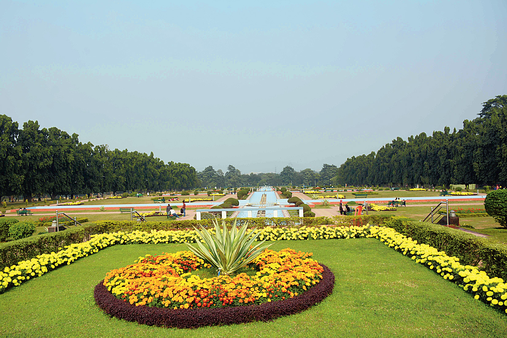 Birds give Jamshedpur's Jubilee Park a miss