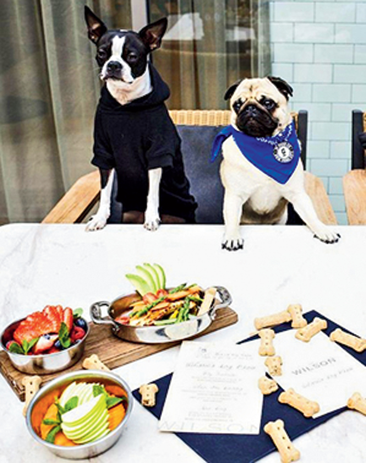 Dogs at The Wilson chow down on a special menu