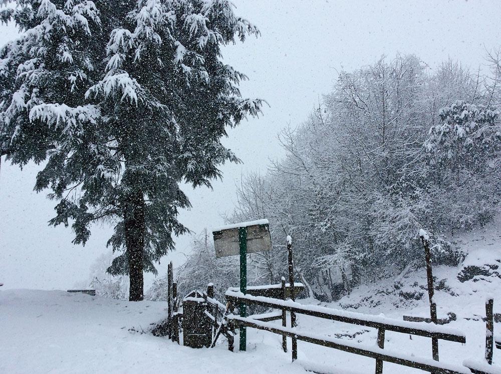 Snowfall in Tshoka