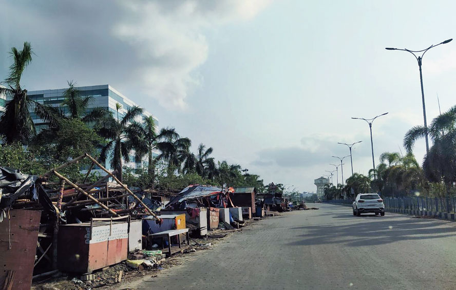 A row of plam trees in New Town which survived Cyclone Amphan. The authorities plan to plant these trees across the township