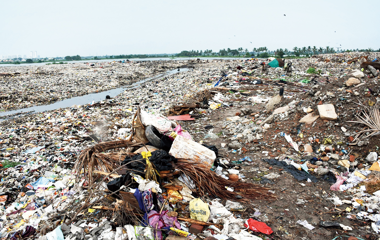 Fine for failing to fence bheri waste dump