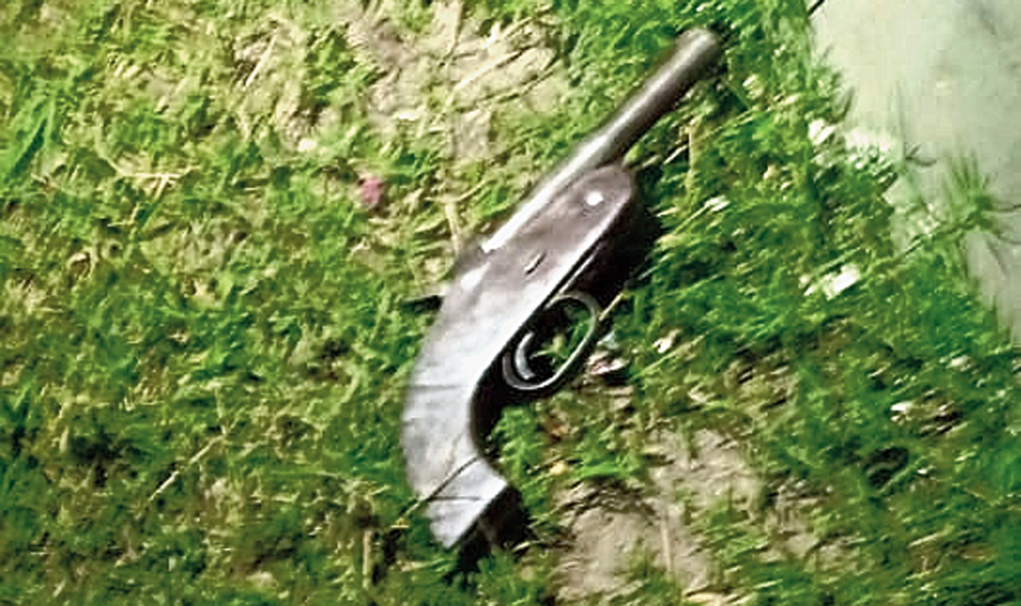 A firearm found near the murder site.