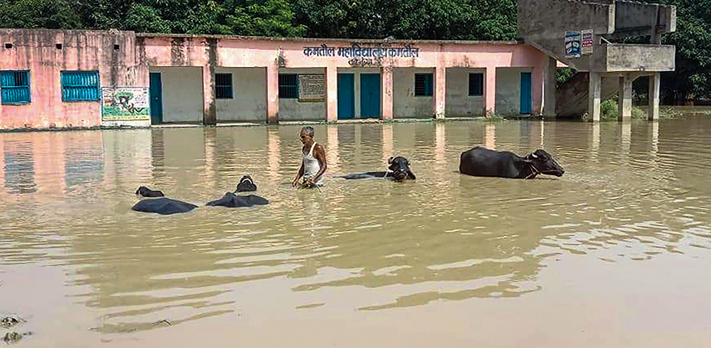 A flooded area in Bihar's Darbhanga district.