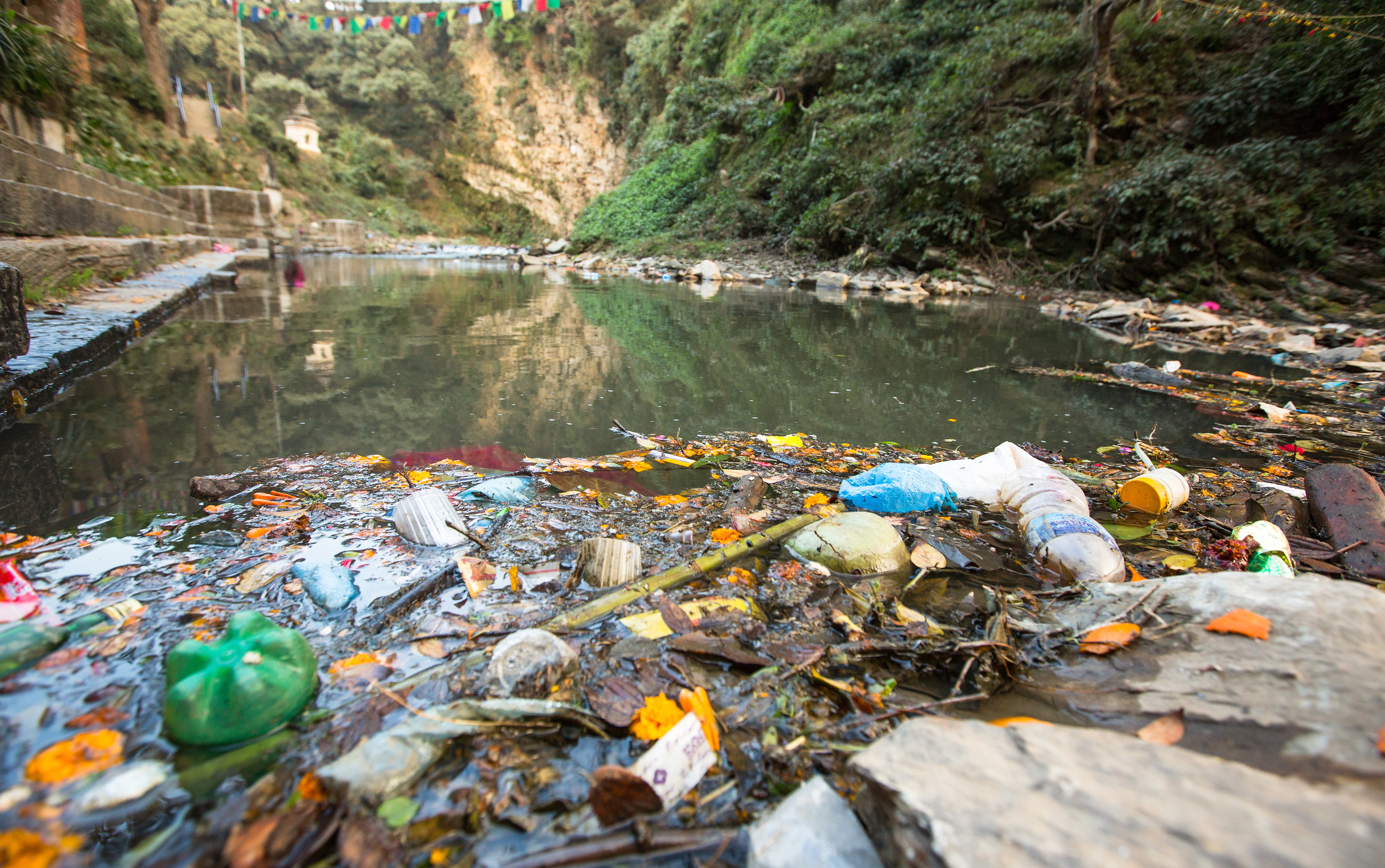 Single-use plastic ban: Is this the solution to the menace?