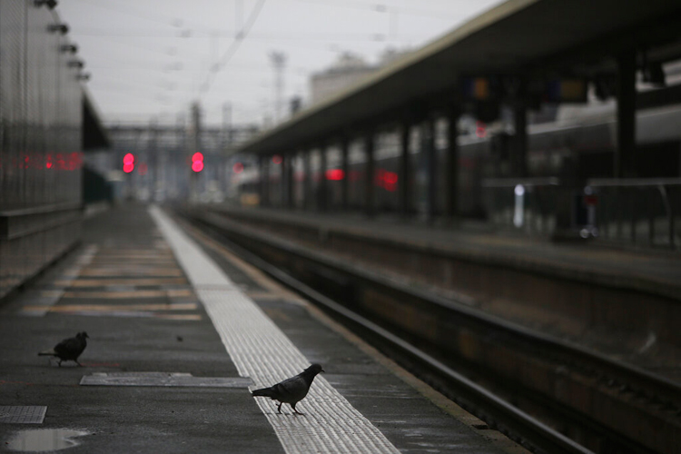 A pigeon perched on a platform at the Gare de Lyon station on December 6 in Paris