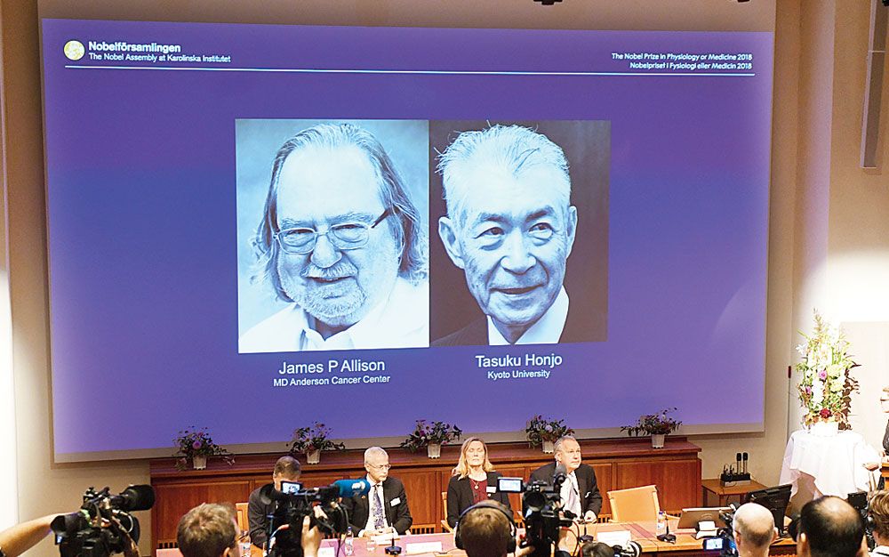 Giant's shoulders: The Nobel committee announces the winners of this year's prize in Medicine