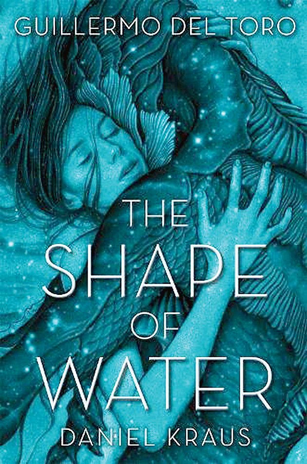The Shape of Water;  Macmillan US; Rs 599