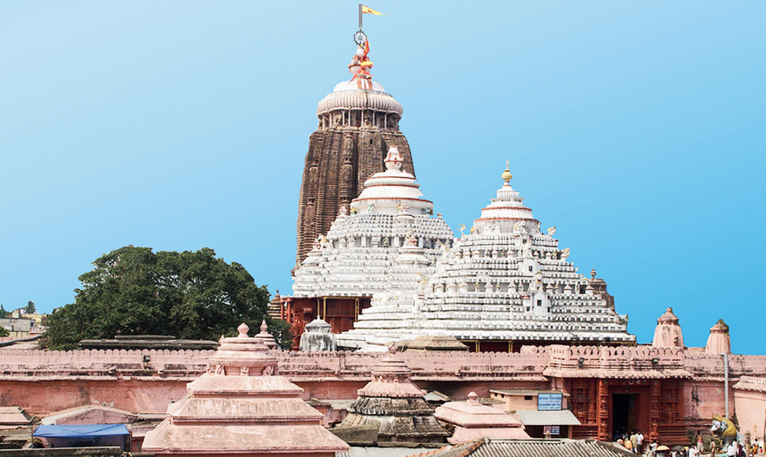 Queue up at Puri shrine from Oct 1
