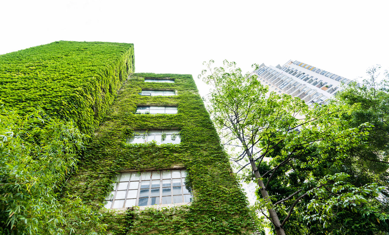 Green buildings could be the solution to local and global problems