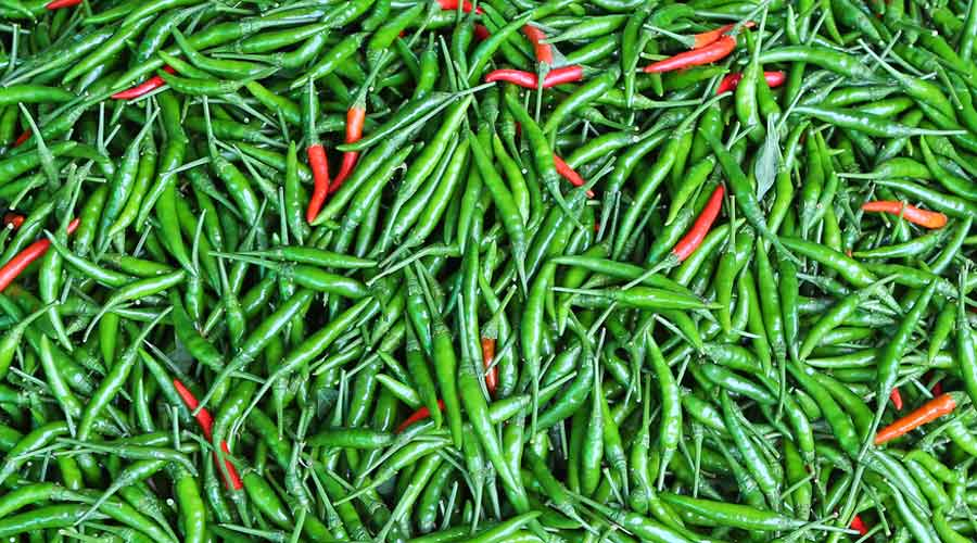 Bengal produces around 9.5 to 10 lakh tonnes of green chillies a year, compared with its annual demand of eight lakh tonnes.