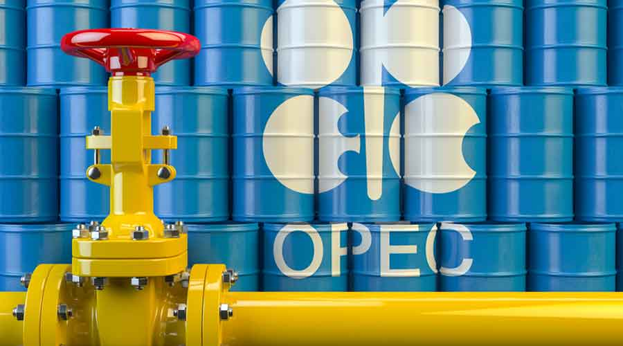 World oil demand will tumble 9.06 million barrels per day (bpd) this year, the Organisation of the Petroleum Exporting Countries said in a monthly report, more than the 8.95 million bpd decline expected a month ago.
