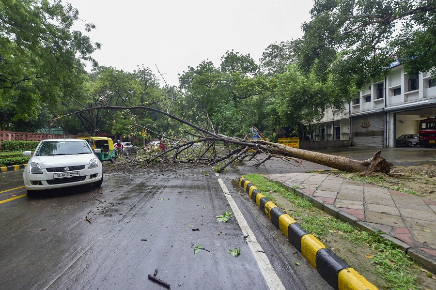 An uprooted tree blocks a road near the Parliament Annexe, after heavy rains in New Delhi on Wednesday