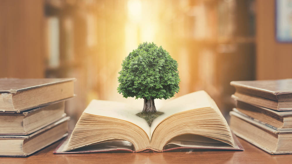 Environment education has to create a new cadre of citizens and professionals who view the environment holistically, recognizing that human actions and inactions have consequences, as in insurance schemes.