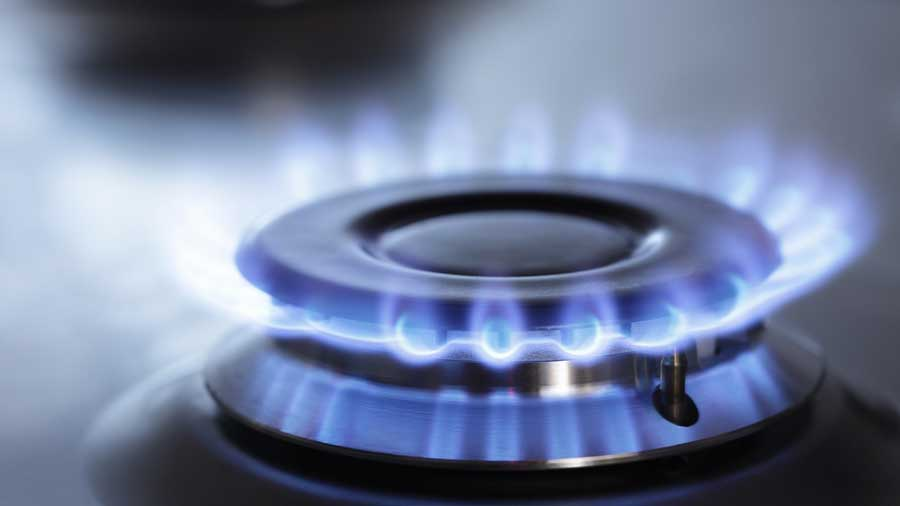 Natural gas which is the cleanest fossil fuel accounts for a little over 6 per cent of all energy consumed in the country.