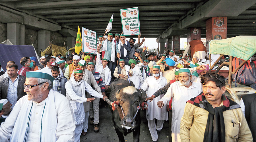 Farmers' groups on Thursday met three Union ministers for the fourth round of talks amid the ongoing protest seeking repeal of the new farm laws. Union Agriculture Minister Narendra Singh Tomar, Railways, Commerce and Food Minister Piyush Goyal and Minister of State for Commerce Som Parkash, who is an MP from Punjab, are holding talks with the representatives of 35 farmers' unions at the Vigyan Bhawan in the national capital.  The government said that the meeting started in the afternoon and discussions are being held in a cordial atmosphere. With no let up in the farmers protest against the Centre's new farm laws, the Delhi Police today intensified its security arrangements and suggested alternative routes to commuters entering or exiting the city. A crucial round of talks between the Centre and the representatives of protesting farmers is scheduled to be held later in the day. In a series of tweets, the Delhi Traffic Police on Thursday alerted commuters about the closure of Singhu, Lampur, Auchandi, Chilla and other borders in view of the farmers protest. It, however, said those wanting to travel to Haryana can take Dhansa, Daurala, Kapashera, Rajokri NH 8, Bijwasan/Bajghera, Palam Vihar and Dundahera borders.