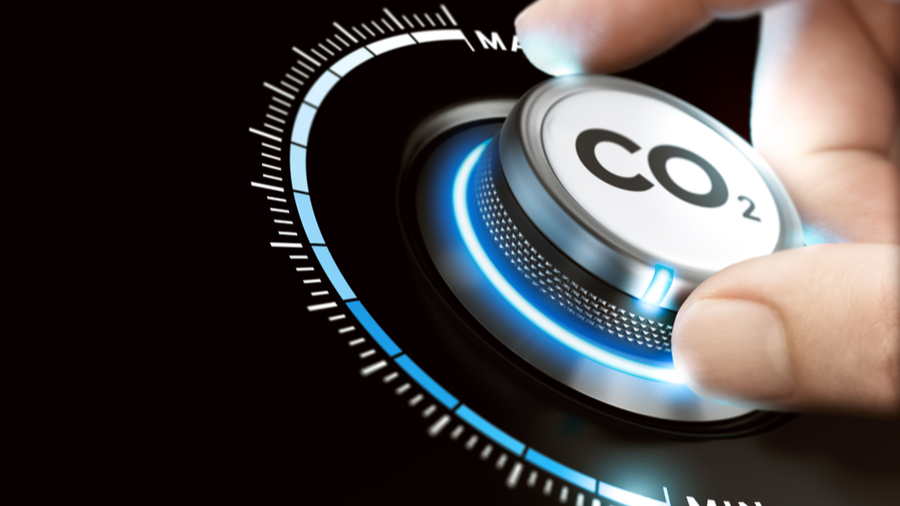 A report by the United Nations Environment Programme has found that carbon dioxide emissions are expected to fall by 7 per cent globally this year.