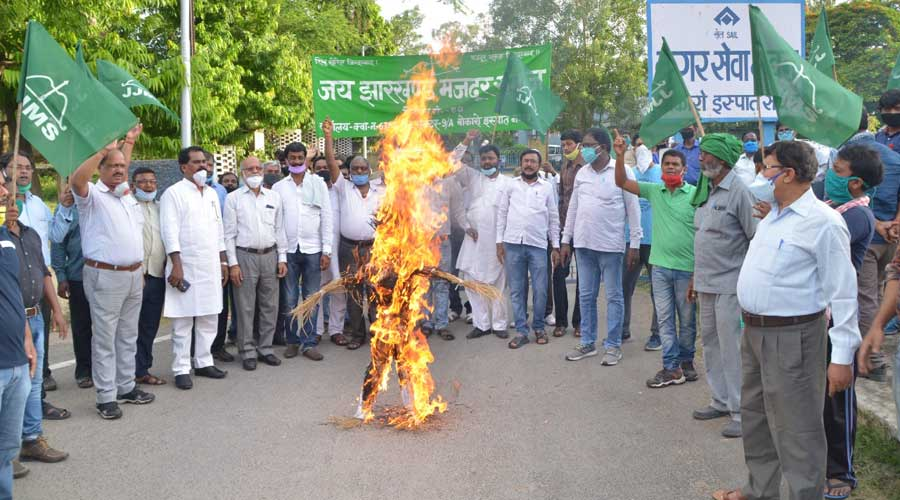 Protesters burn an effigy of Union steel minister  Dharmendra Pradhan