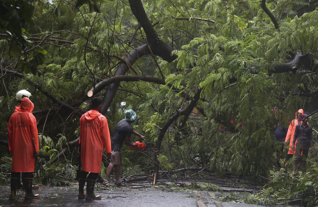 Firefighters clear branches of a tree after it fell during rainfall in Mumbai, Saturday, July 4, 2020.