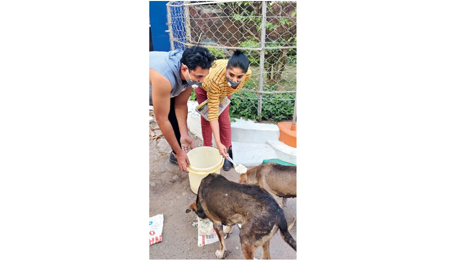 Debleena Dutt Mukherjee and her husband Tathagata feed home-cooked food to street dogs during the pandemic