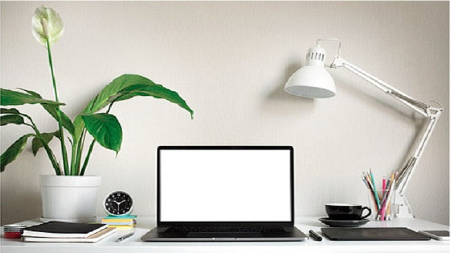 With small, handy table-top planters, you can easily accessorise your desks with beautiful greens