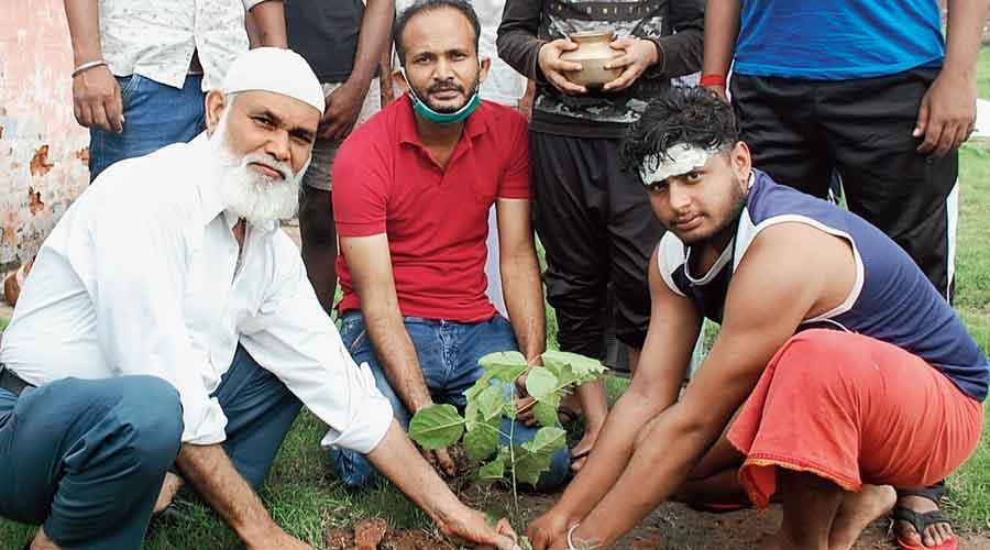 A tree being planted at Tiwari Mandir