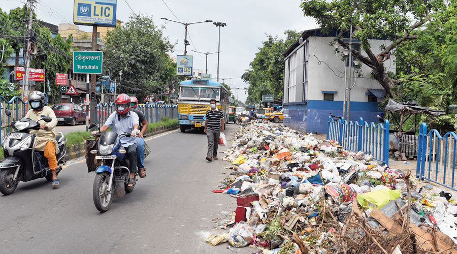 Garbage dumped on Jessore Road near Lake Town on Monday.