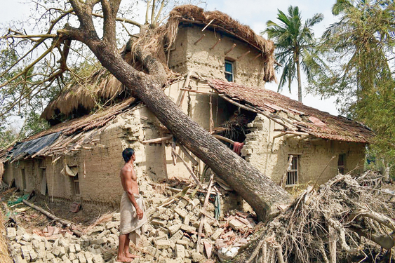 A resident inspects his house damaged by a tree fallen during Cyclone Amphan at Sagar in South 24-Parganas.