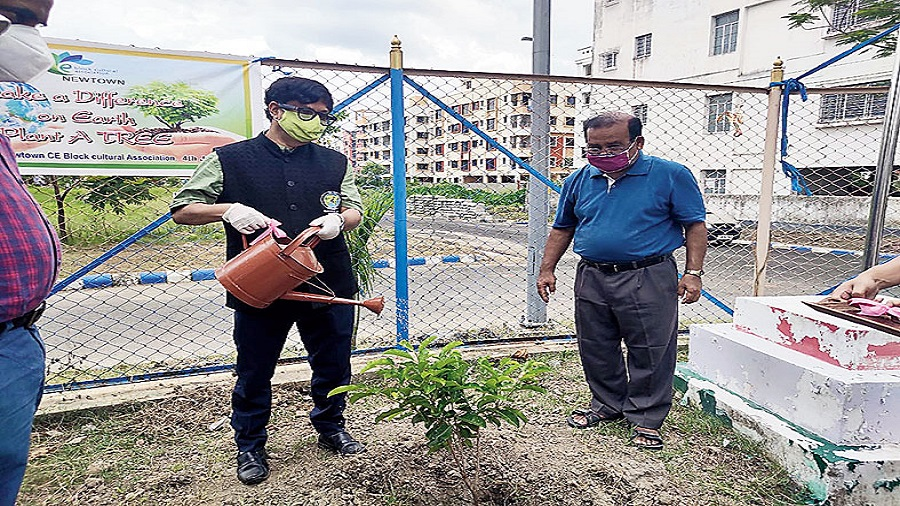 Hidco chairman cum managing director Debashis Sen waters a sapling in CE Block in New Town as block secretary Alok Das looks on. Sixty trees were planted in the block on Saturday. Another 40 will be planted in course of the monsoon