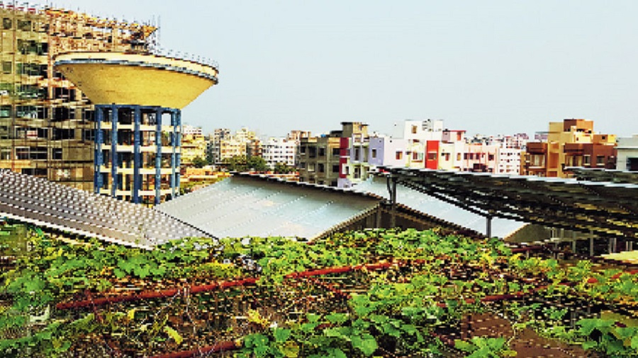 The rooftop garden atop the NKDA Market in CB Block. The NKDA wants such gardens to come up on every roof in New Town