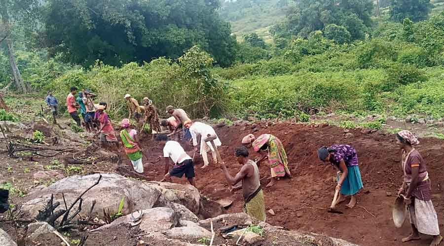 The villagers of B Ranipanga in Kandhamal, Odisha, digging the canal on June 21