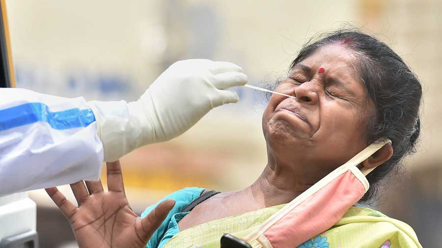A health worker collects a a woman's swab sample for a Covid-19 test in Calcutta on Saturday.